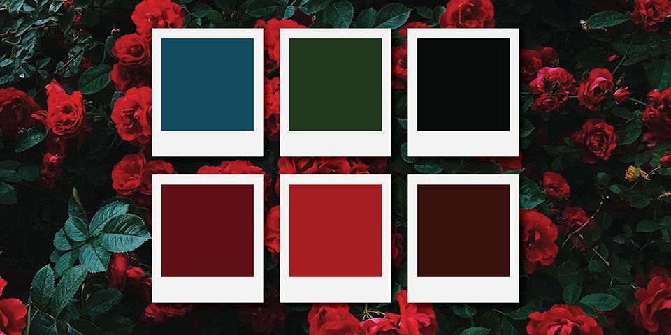 انتخاب رنگ ثانویه در طراحی UI